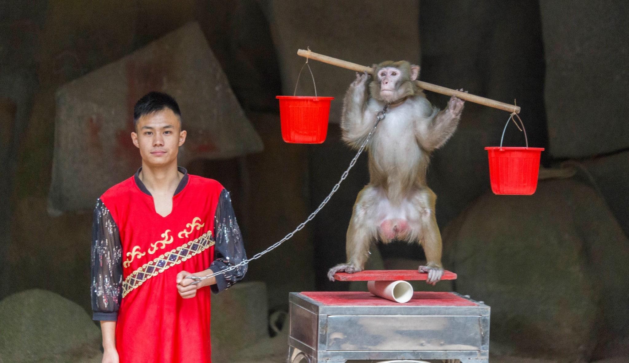 Paraziták a Hainanban - Korbféreg fertőzés útvonalak