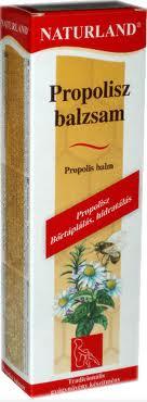 Szimpatika – A propolisz gyógyító hatása a különböző kórképekben