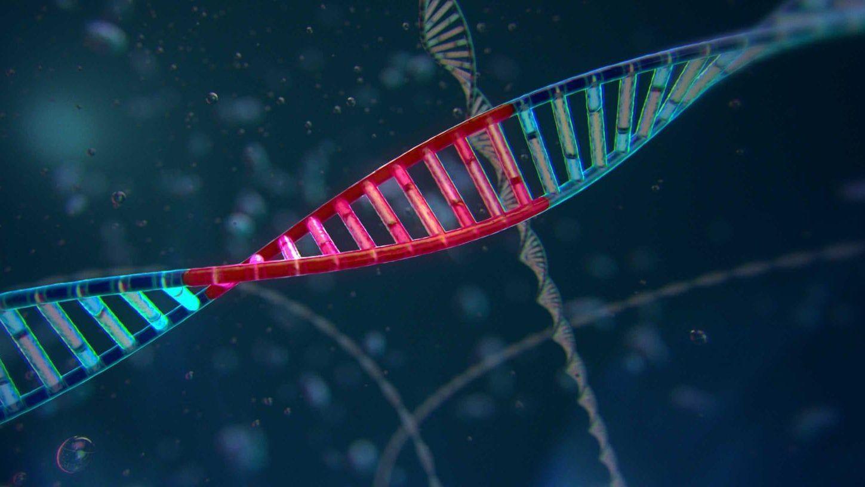 génmanipulált gyógyszerek pikkelysömörhöz